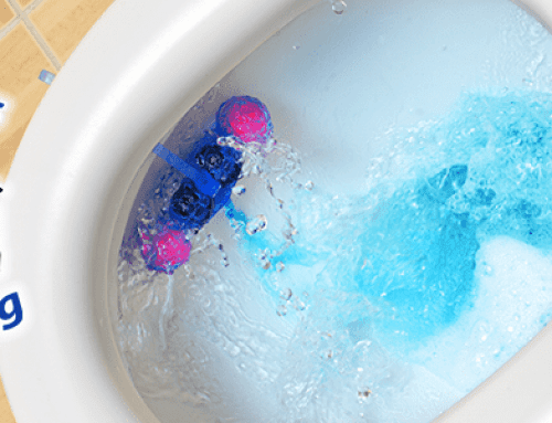 Dual Flush Toilets: What You Should Know